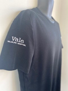 Ladies Luxury Cotton T-Shirt